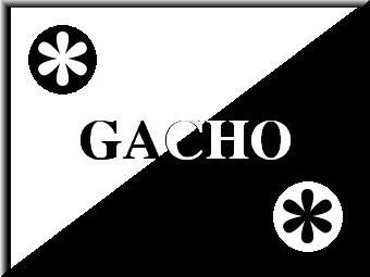 for@gacho.jpg